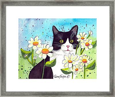 Daisy M. Tuxedo Framed Print