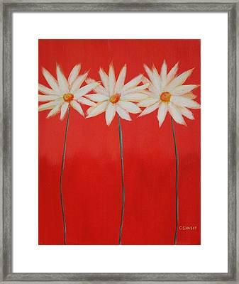 Daisy Trio - Red Framed Print by Cheryl Sameit