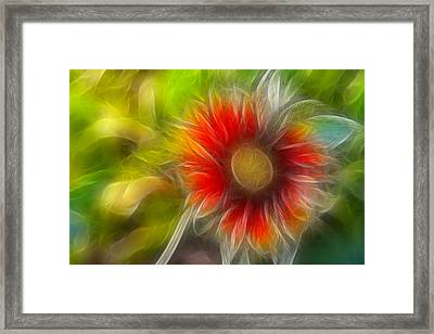 Framed Print featuring the photograph Dalia Pseudo Fractal by Lynne Jenkins