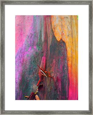 Framed Print featuring the digital art Dance For The Earth by Richard Laeton