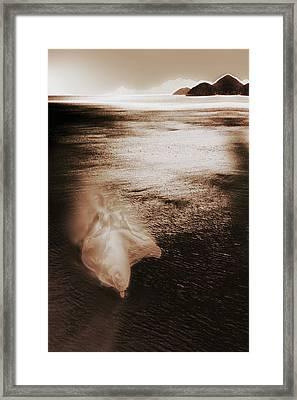Dance Framed Print by Li   van Saathoff