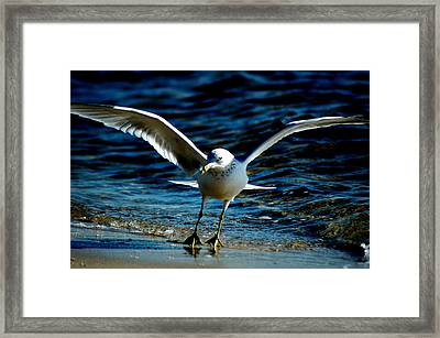 Dance Move Framed Print