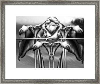 Dance Of The Black And White Calla Lilies Vi Framed Print by Georgiana Romanovna