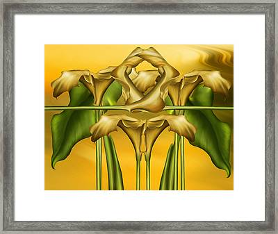 Dance Of The Yellow Calla Lilies II Framed Print