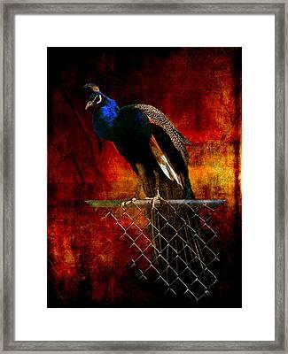 Dancer In The Dark Framed Print by Leah Moore