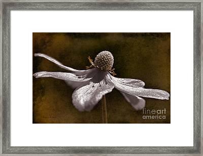 Dancing In The Breeze Framed Print by Deborah Benoit