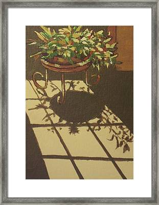 Dancing Light Framed Print by Sandy Tracey
