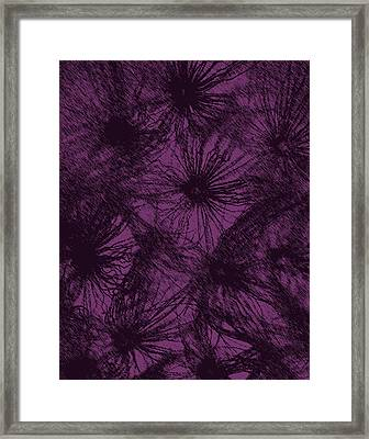 Dandelion Abstract Framed Print by Ernie Echols
