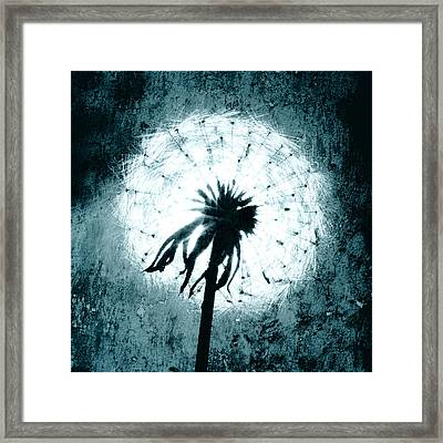 Dandelion Art 6 Framed Print by Falko Follert