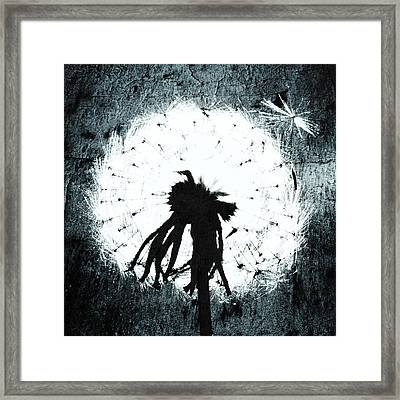 Dandelion Art 7 Framed Print by Falko Follert