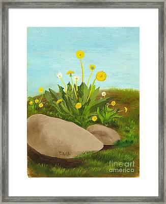 Dandelion Field Framed Print