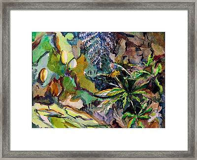 Dandelion In The Leaves Framed Print by Mindy Newman