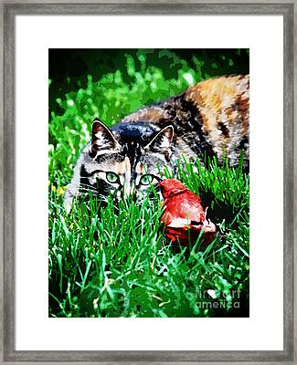 Framed Print featuring the photograph Dangerous Friends by Laura Brightwood