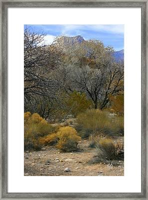 Daniels Mountain Framed Print
