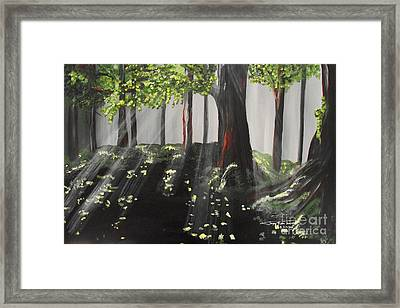 Dappled Forest 1 Framed Print by Jayne Kerr