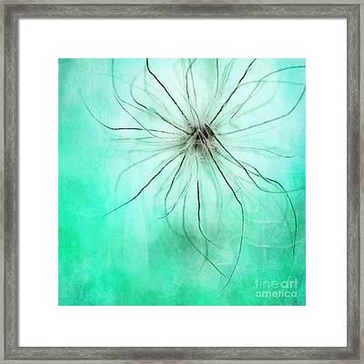 Dar La Luz Framed Print by Priska Wettstein