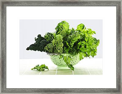 Dark Green Leafy Vegetables In Colander Framed Print by Elena Elisseeva