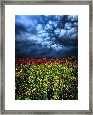 Dark Mood Framed Print by Phil Koch