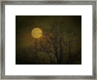 Framed Print featuring the photograph Dark Moon by Robin Dickinson