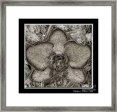 Dark Orchid Framed Print by Debbie Portwood