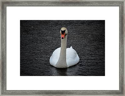 Framed Print featuring the photograph Dark Rain by Brian Stevens