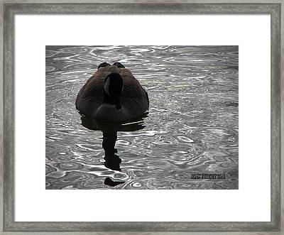Framed Print featuring the photograph Dark Reflections by Brian Stevens