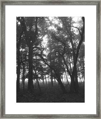 Framed Print featuring the photograph Dark  Shadows II by Penny Hunt