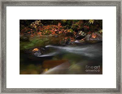 Dark Water Autumn Framed Print by Mike  Dawson