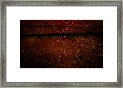Framed Print featuring the photograph Dark Web by Robin Dickinson