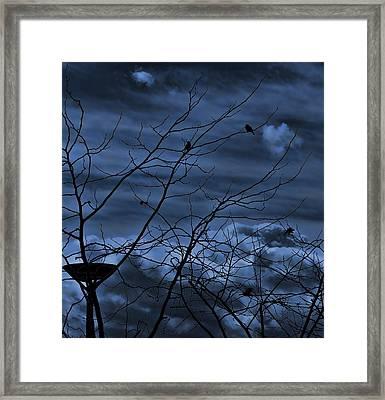 Darkblue Framed Print by Amr Miqdadi