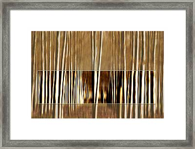 Darkness Within Framed Print by Terrie Taylor
