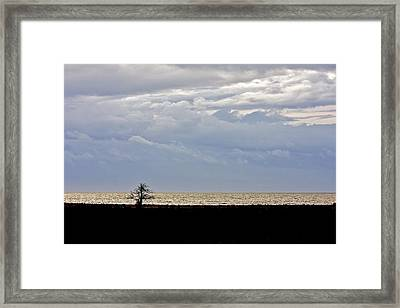 Framed Print featuring the photograph David And Goliath  by Scott Holmes