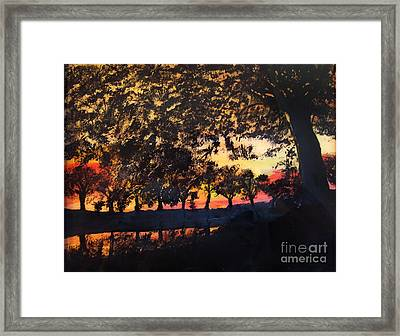 Dawn On The Canal Framed Print