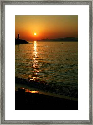 Dawn Swimmer Framed Print
