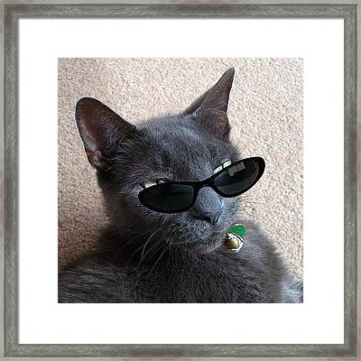 Day 16 #marchphotoaday #sunglasses Framed Print by Cameron Bentley