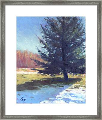 Day After Snowfall Framed Print by Michael Camp