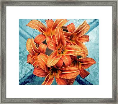 Day Lily Framed Print by Image By Emeraldnicola