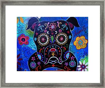 Day Of The Dead Bulldog Framed Print