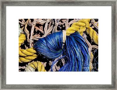 Day On The Pier Framed Print by Sandra Bronstein