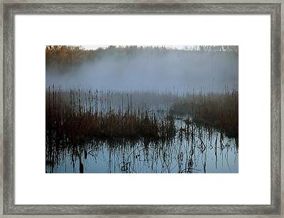 Daybreak Marsh Framed Print