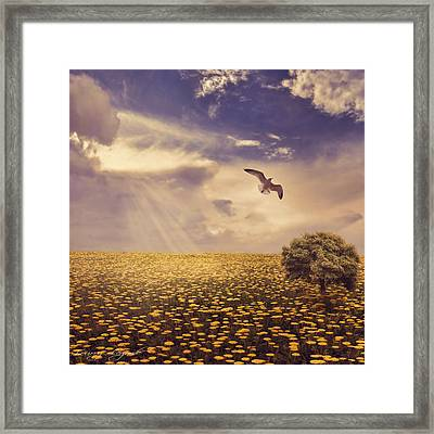 Daydream Framed Print by Lourry Legarde