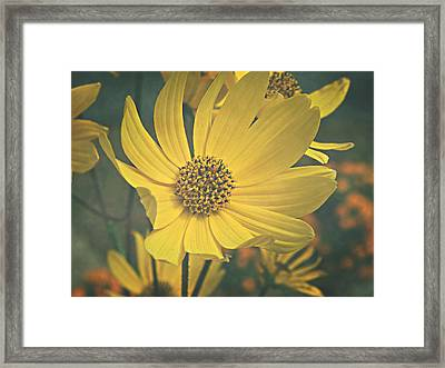 Framed Print featuring the photograph Daydreaming Is Free by Robin Dickinson