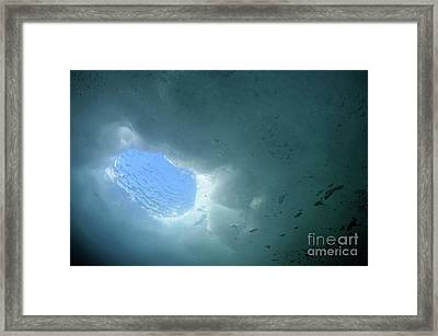 Daylight Through Ice Hole Framed Print