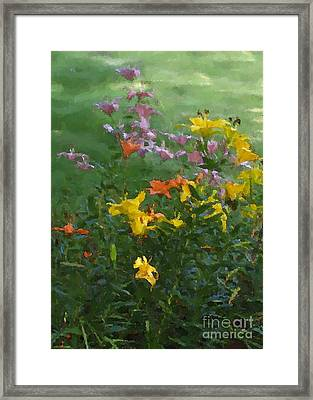 Daylilies 2012 Detail Framed Print