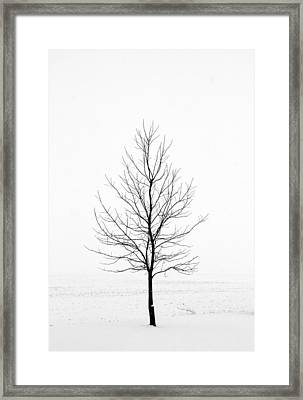 Dead Of Winter Framed Print by Doug Hockman Photography