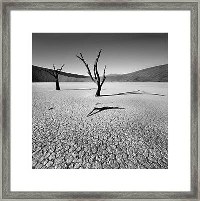 Dead Vlei Framed Print by Nina Papiorek