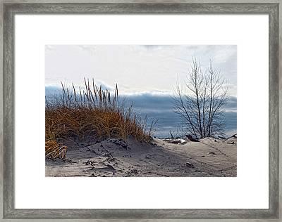 December Dune Framed Print