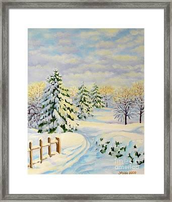 December Morning Framed Print