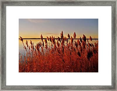 December Sunrise ... Framed Print by Juergen Weiss