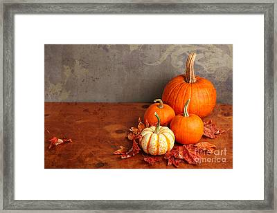 Framed Print featuring the photograph Decorative Fall Pumpkins by Verena Matthew